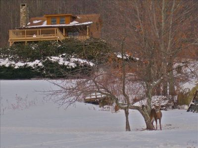 Ski Sugar Mtn 3 mins away.  Sled down our hill. See the deer, it's real!!