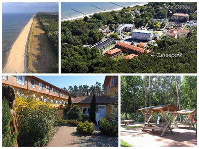 Photo for Zempin Baltic Sea Park WE 28 ** Usedom Island ** 100m to the beach ** - WE 28