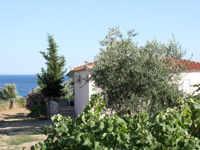 Photo for Calm and idyllic located holiday house, sea view | Messenia, Peloponnese