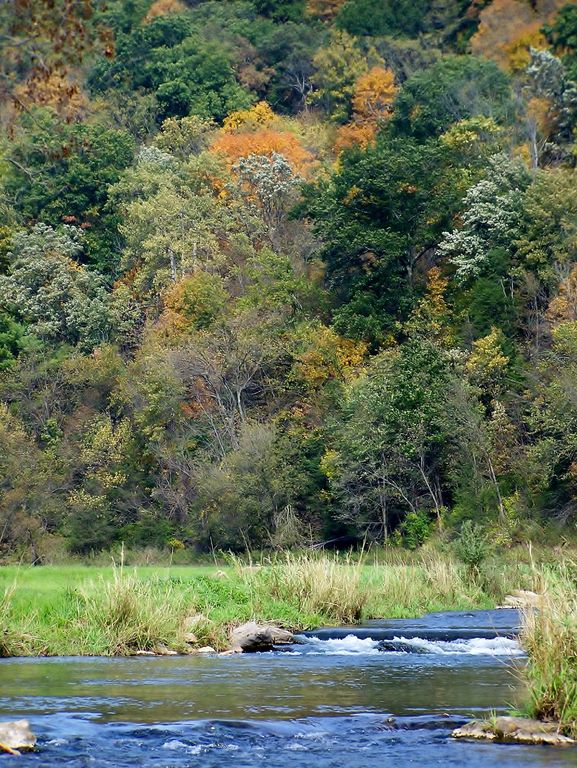 Best view in the driftless great trout fishing birding for Best fishing in wisconsin