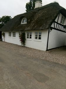Photo for Overnight in idyllic thatched house near forest and beach