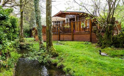 Lazy Days Lodge. The ducks swim up the stream and visit daily
