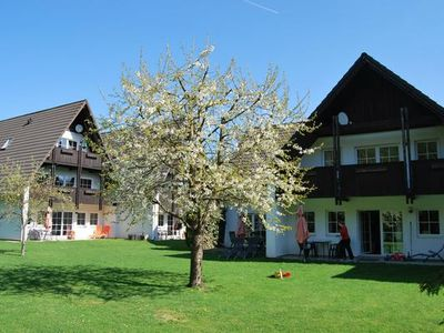 Photo for Apartment Walkenried for 2 persons with 1 bedroom - Holiday