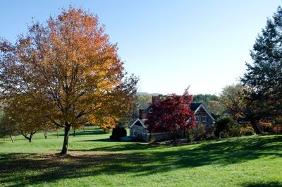 The main house with fall leaves