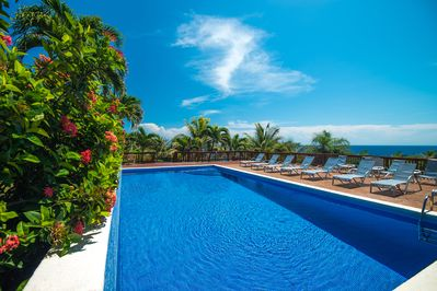 Community pool with ocean view. Free for guests of Trade Winds to use.
