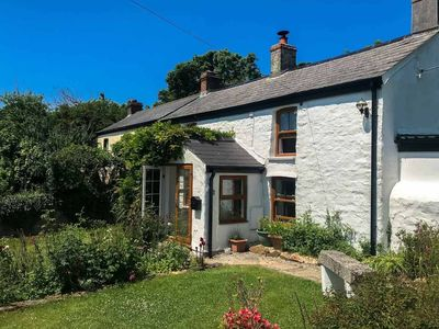 Hollowtree Cottage -  a holiday cottage that sleeps 6 guests  in 3 bedrooms