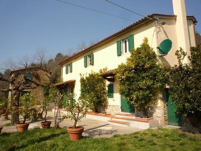 Photo for Farmhouse in upper Tuscany between the olive trees