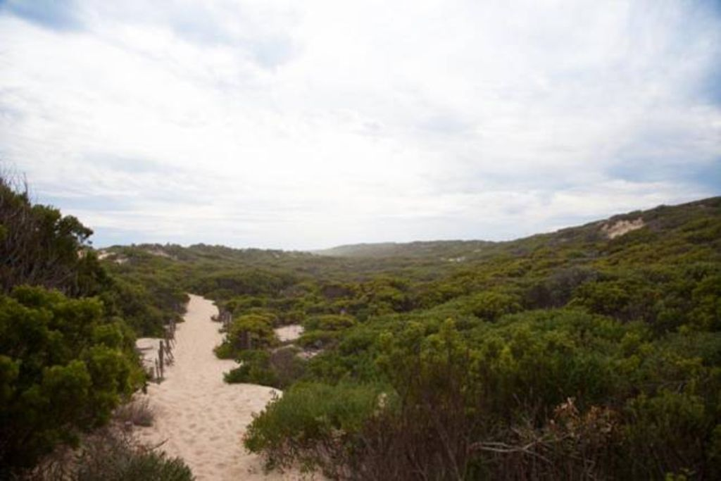 Coastal bush retreat - St. Andrews Beach