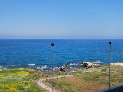 Photo for Beach Front - Spectacular, Modern Paphos Villa