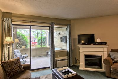 Electric fireplace, walk out patio - This cozy living room includes a sleeper sofa, comfy chair, electric fireplace, TV with cable & DVD player.