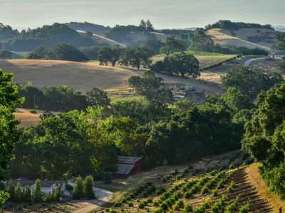 Photo for Orchard Hill Farm--Elegant Comfort in Desirable West Side Paso Robles