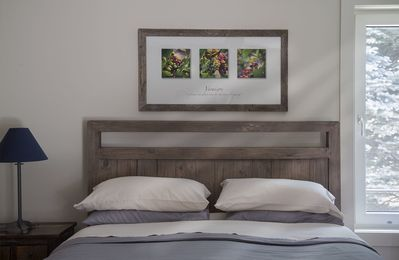Comfy Queen with Oxford Cotton Bedding