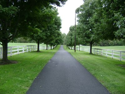 Entrance Driveway from Route 40 Alternate - Road to Heaven!