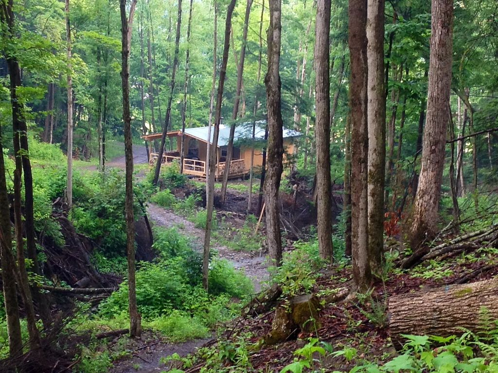 Cabin Creek Getaway Letchworth 100 Acre Vrbo
