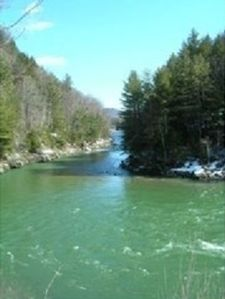 We're right on the White River with great swimming and fishing