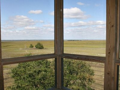 View of Marsh from screened porch off kitchen; enjoy the birding