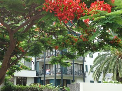 Photo for Nestled in Funchal's Heart, near St. Catherine Park and Presidential House