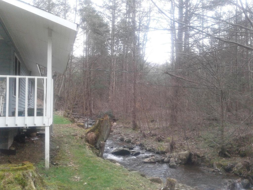 Secluded cottage nestled at near State Park and the base of Roan Mountain