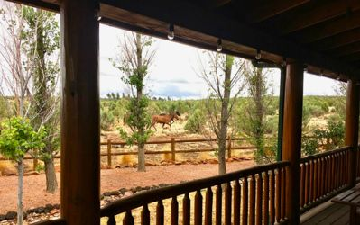 Wild Heber horses roam and walk by several times a week! Endless views!