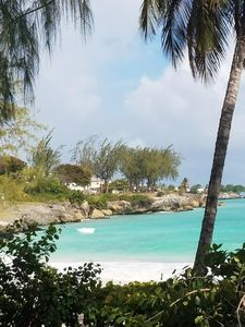 Photo for Mangoville Near Dover Beach