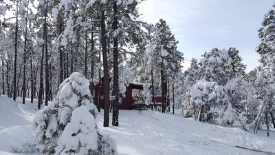 Photo for Romantic and Cozy Cabin Tucked Among Pine Trees