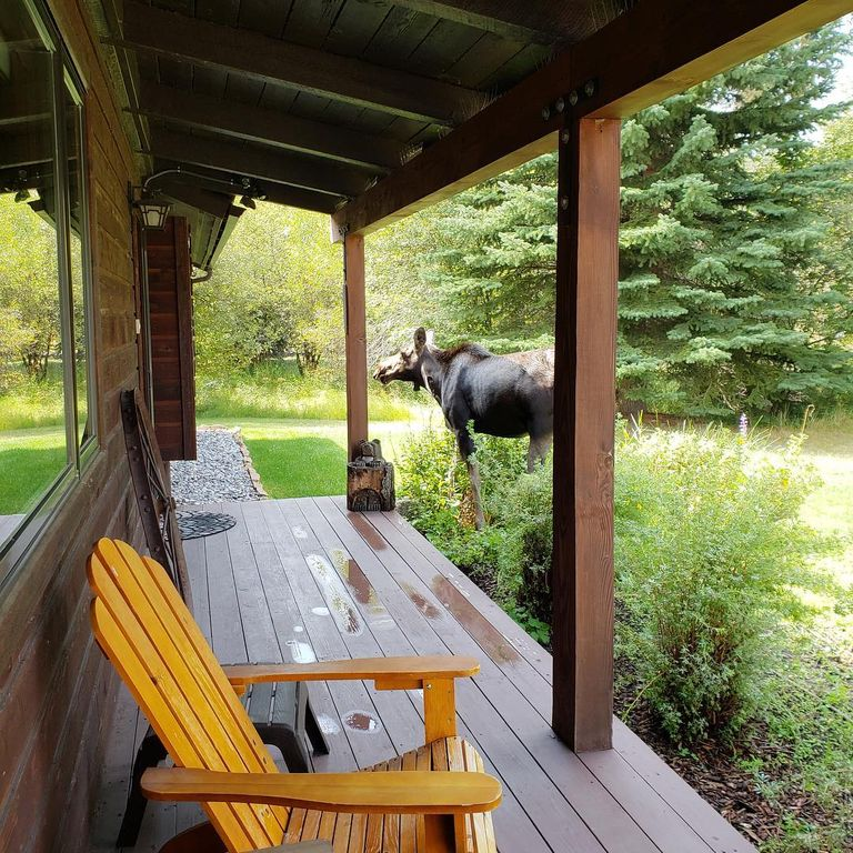 Quaint Home With Wildlife Neighbors And Private Backyard