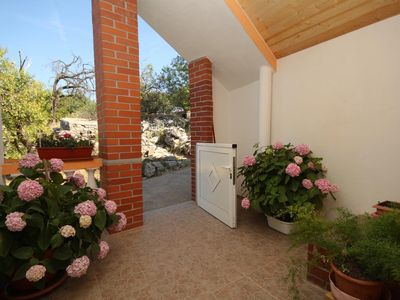 Photo for One bedroom apartment with terrace Sali (Dugi otok)