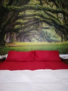 Photo for Double room: Smart-TV, Wi-fi, Parking, Breakfast.