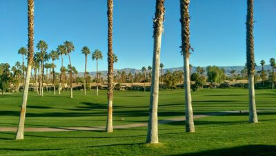 View from golf course patio