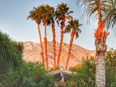 Photo for 4 bedroom/3 bath/Private Pool/Spa Contemporary Great Views!