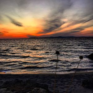Photo for Genari Beach Apartments-A stone's throw from the Ionian Sea!!!!!!!
