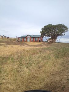 Rocky Mountain Elk Experience..private cabin on private Ranch, elk included.