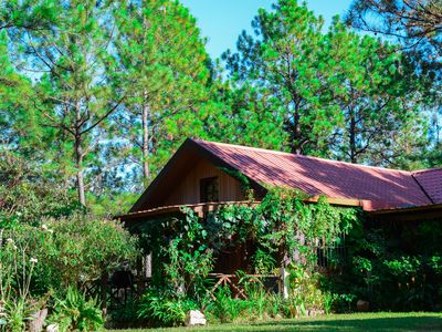 Photo for Beautiful cabin on amazing forest in Perquin