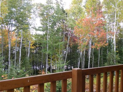 Birch Overlook - Fall foliage from the front porch, Prong Pond thru the trees.