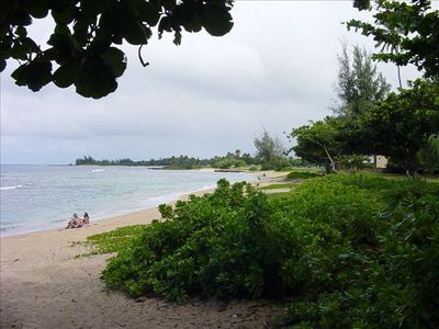 Photo for Stunning Beachfront Location in Haleiwa with wifi & cable
