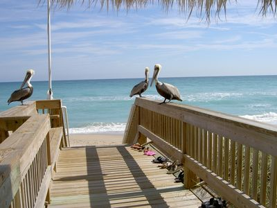 Photo for Ocean Front Condo on Hutchinson Island with Great Beach Views and Access