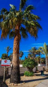 Photo for Rural house in La Manga, ideal for families, pets allowed