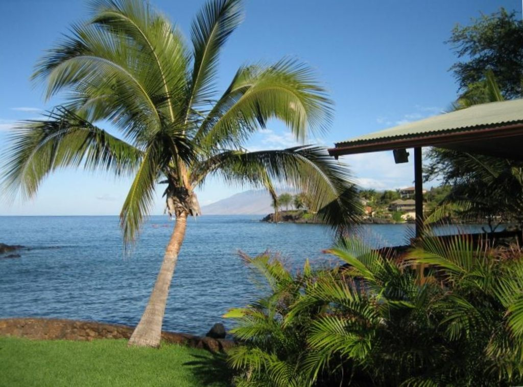 Makena Oceanfront Cottage - Spectacular location!