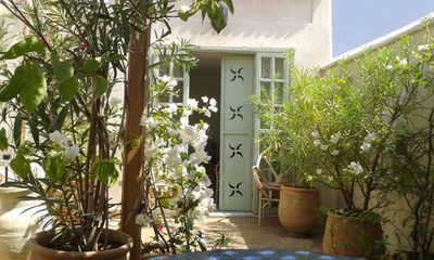 Garden on the roof terrace: jasmine, bougainvillea, laurel, fruit trees ...