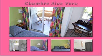 Photo for The Aloe Vera Room