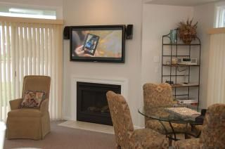 HD TV and Fireplace