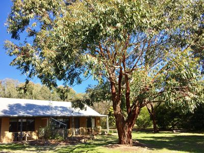 Photo for Grampians Pomonal Cottages 5 Wildlife & Views