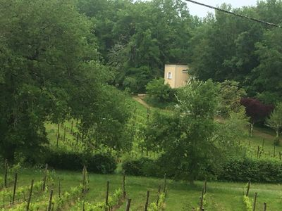 Photo for Wake up between the vineyards in the Dordogne