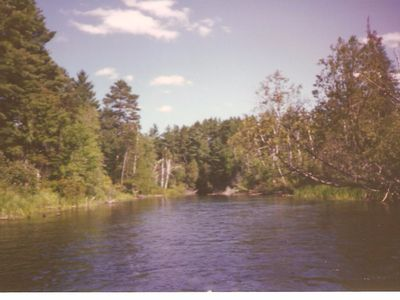 Photo for South Branch Au Sable River House