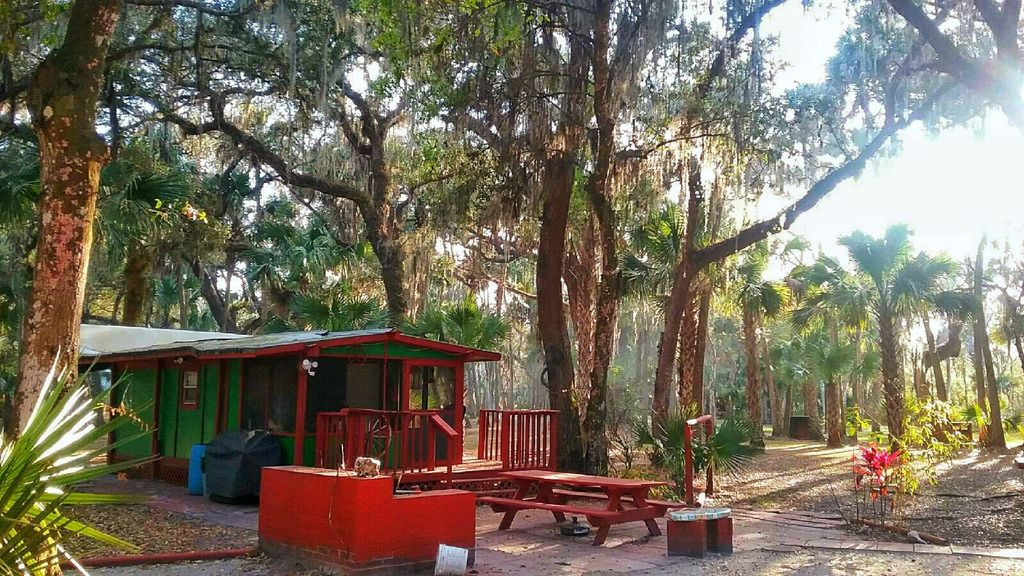 Central Florida Log Cabin Home Horse Grazing Pastures