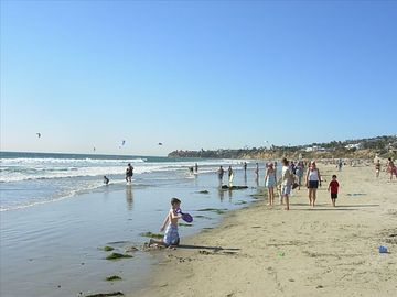 Dog Beach, San Diego, California, United States of America