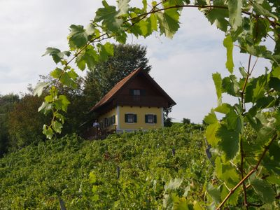 Photo for Vacation home in the middle of vineyards
