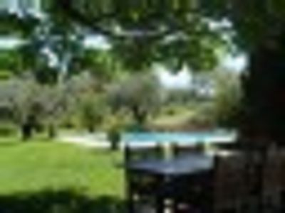 Photo for To discover in fields of olive-trees, Mas provencal, very beautiful benefits