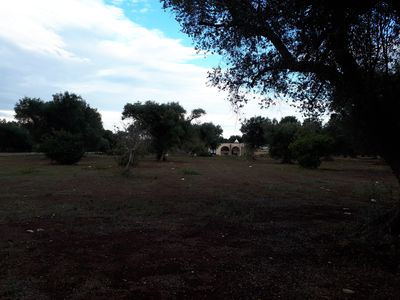 Photo for Dimora 13 - an oasis of tranquility among the olive trees
