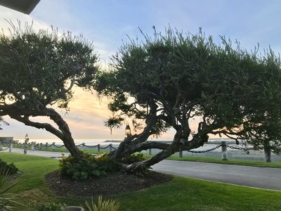 Photo for Ground Level OCEANVIEW COTTAGE, steps to the sand, harbor view F5 - Seaside Manor, QUIET & INTIMATE